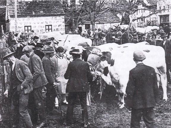 Bild der Dorfmitte 1931 Stierkörung vor dem Feuerwehrhaus